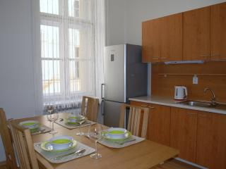 2 bedrooms, a GROUP RATE downtown - Prague vacation rentals