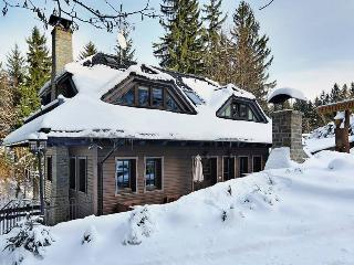 Luxury cottage with own wellness - Frydlant nad Ostravici vacation rentals