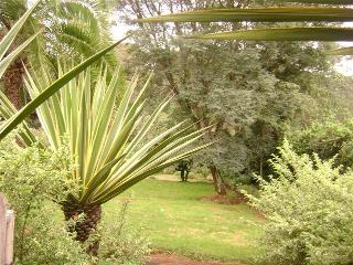 Spacious House with Internet Access and Satellite Or Cable TV - Limuru vacation rentals