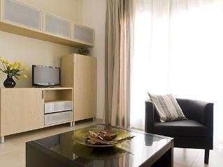 Barcelon - Ferran Puig - Barcelona vacation rentals