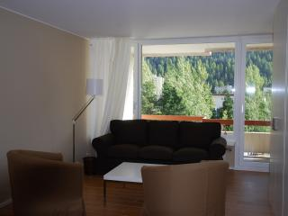 Perfect 1 bedroom Condo in Saint Moritz - Saint Moritz vacation rentals