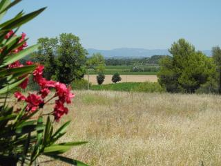 Les Trois Oliviers: private pool, hot tub & views - Pezenas vacation rentals