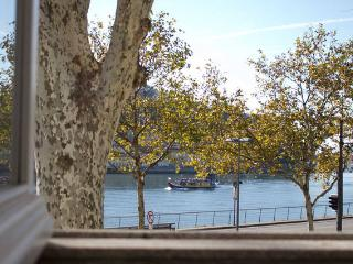Porto Douro River Guest House II - Porto vacation rentals
