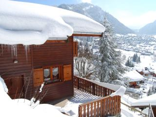 Nice chalet with superb views near centre & lifts - Chatel vacation rentals