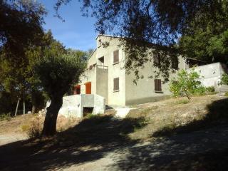 A CASA DI L'ALIVU studio Amandula - Patrimonio vacation rentals