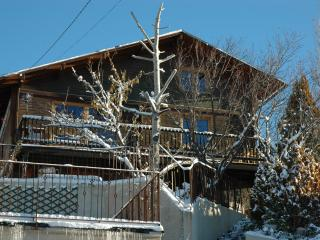 Cosy and sunny chalet in the French Pyrenees ski - Estavar vacation rentals