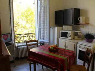 1 bedroom Condo with Internet Access in La Bourboule - La Bourboule vacation rentals