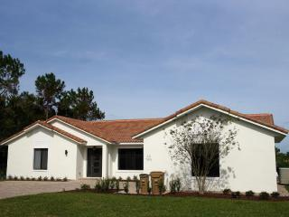 Nice Villa with Internet Access and A/C - Clermont vacation rentals