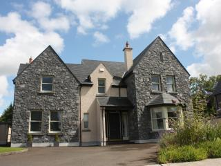 Lovely House with Internet Access and Satellite Or Cable TV - Bunratty vacation rentals