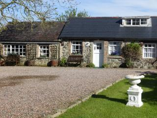 Charming 2 bedroom Cottage in Bushmills with Internet Access - Bushmills vacation rentals