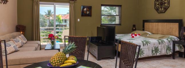 OCEAN DREAM STUDIO beachfront residence - Image 1 - Cabarete - rentals