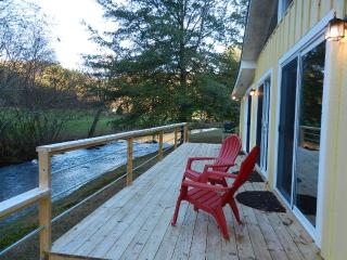 Valley Creekside Cottage - Ellijay vacation rentals