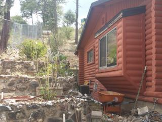 Modern rustic cabin in the pines near downtown - Prescott vacation rentals