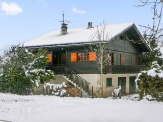 Magnificent chalet with garden - Alex vacation rentals