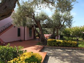 Villa Bruna - Cefalu vacation rentals