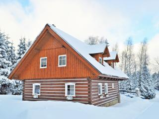 Nice Chalet with DVD Player and Fireplace - Jablonec nad Nisou vacation rentals