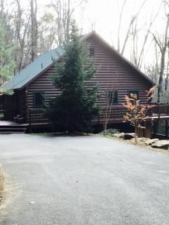 Mountain Cabin Getaway Dillard, GA Sleeps 12 - Rabun Gap vacation rentals