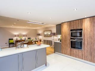 BREATHTAKING 3 Bed Hyde Park House Private Road - London vacation rentals