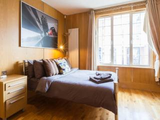 Huge Modern Flat next to Tube - London vacation rentals