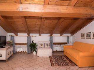 Nice Condo with Internet Access and A/C - Trento vacation rentals