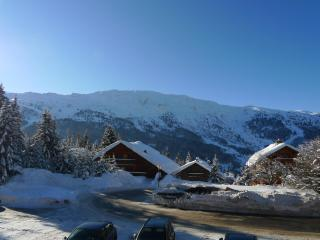Charming Meribel Condo rental with Internet Access - Meribel vacation rentals