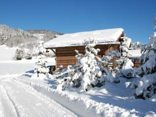 Beautiful Chalet with Hot Tub and Sauna - Megève vacation rentals