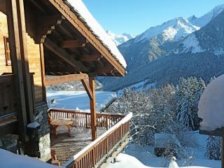 Sunny 4 bedroom Courchevel Chalet with Internet Access - Courchevel vacation rentals