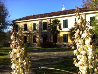 Casale tra Langhe e Monferrato - Asti vacation rentals