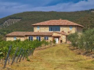 Perfect 9 bedroom Villa in Tuscany with Internet Access - Tuscany vacation rentals