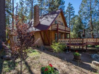 The Lodge on San Jacinto, new A/C for the summer.... - Idyllwild vacation rentals
