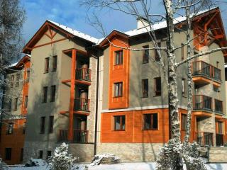 1 bedroom Apartment with Internet Access in Zlatibor - Zlatibor vacation rentals