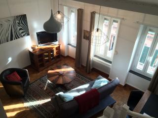 Nice Toulouse Apartment rental with Internet Access - Toulouse vacation rentals
