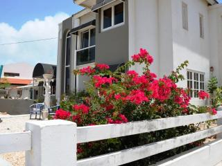 Deluxe Suite - Steps from Marriott, Ritz & Beach - Palm/Eagle Beach vacation rentals