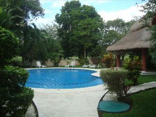 Big house 3 bedroom (5beds), 3.5 bathroom Playacar - Playa del Carmen vacation rentals