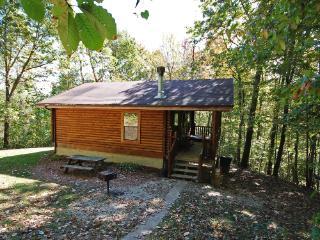 Jackson Cabin - Rockbridge vacation rentals