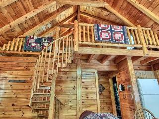McKinley Cabin - Rockbridge vacation rentals