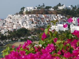 Have it All: Ocean View, Beach and Pool! - Manzanillo vacation rentals