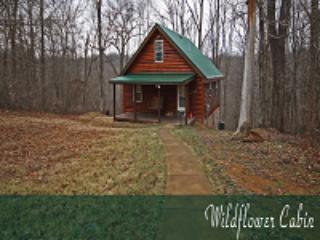 Wildflower Cabin - Rockbridge vacation rentals