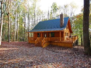 Fireside Cabin - Rockbridge vacation rentals