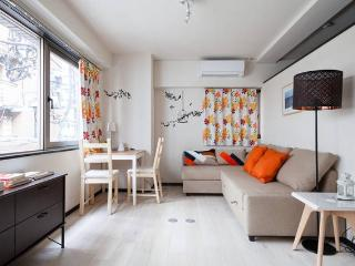 Cozy Ueno Asakusa family~group portable Wifi - Taito vacation rentals