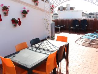 penthouse with terrace85m2, downtown - Nerja vacation rentals