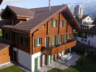 Bright 3 bedroom Interlaken Apartment with Television - Interlaken vacation rentals