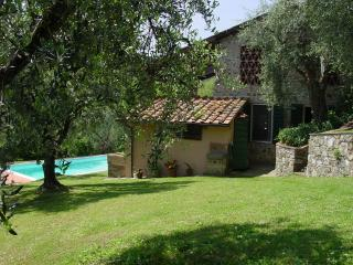 Villa swimming pool in Lucca - Lucca vacation rentals