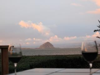 Pet Friendly Estuary Hideaway Overlooks Morro Bay - Los Osos vacation rentals