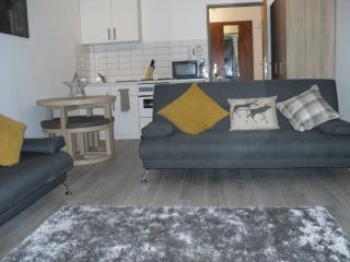 Modern Studio for 5 guests 10 min Saalbach centre - Saalbach vacation rentals