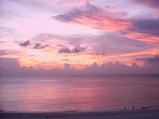 Enjoy peaceful days & awesome sunsets - Clearwater vacation rentals
