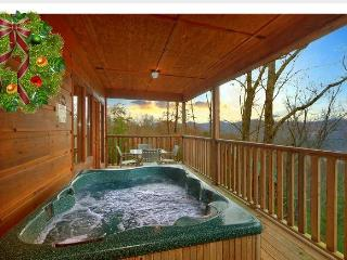 DEC Special $90- ARCADE, Dollywood, Mountain View - Sevierville vacation rentals
