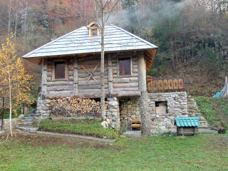 Stylish wood chalet - Kolasin vacation rentals