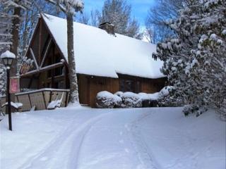 Beech Mountain, Bentley's Chalet /Close to skiing - Beech Mountain vacation rentals