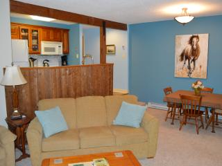 2BR Newly Renovated Private and Cozy! - Wintergreen vacation rentals